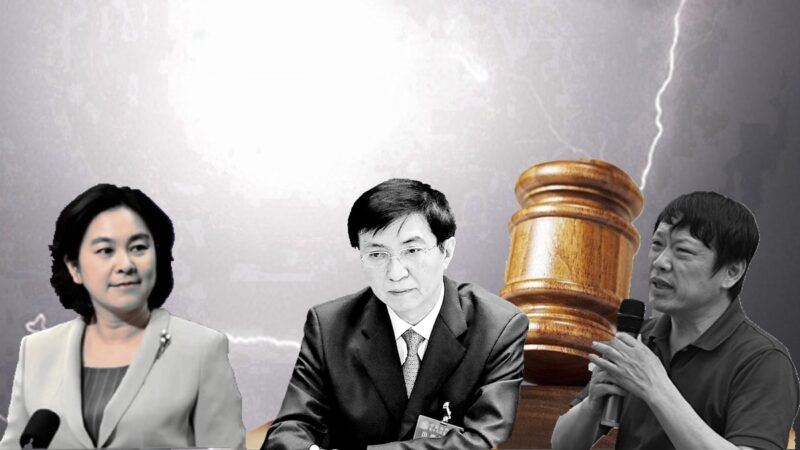 政治段子:华春莹、胡锡进、王沪宁打听退党