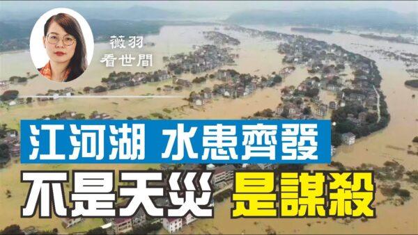 【薇羽看世間】江河湖水患齊發 網評:不是天災 是謀殺