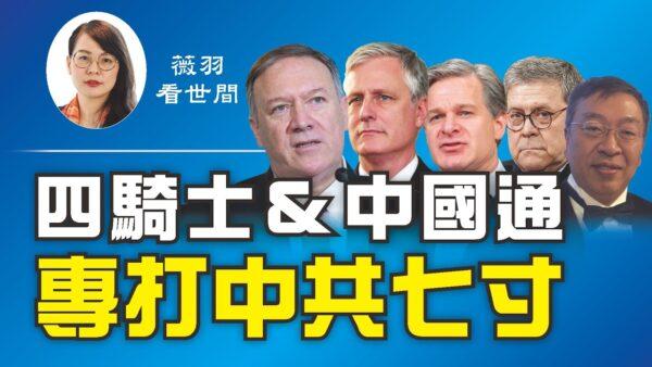 【薇羽看世间】四骑士&中国通 专打中共七寸