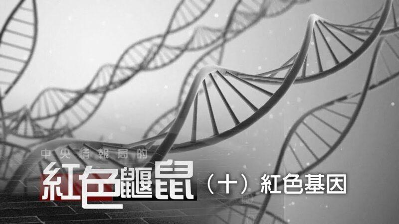 《中央情报局的红色鼹鼠》(十)红色基因