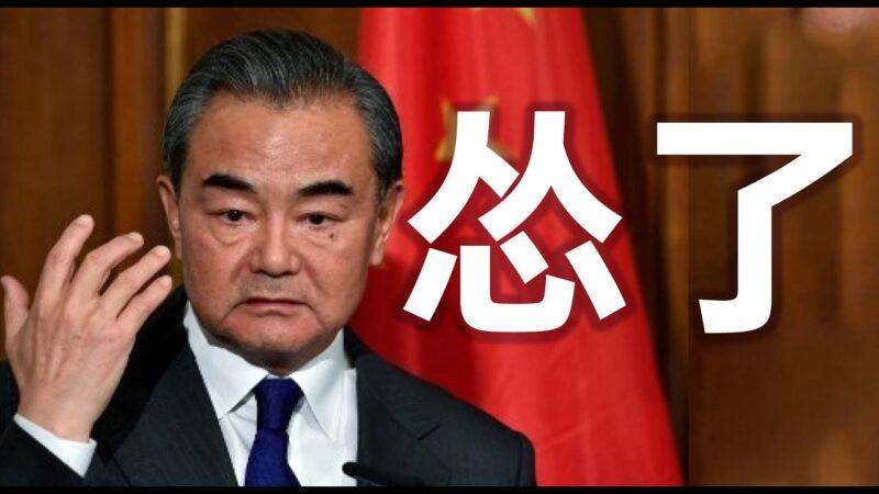 王毅對美喊話突變調 網民:戰狼呢?別服軟啊!
