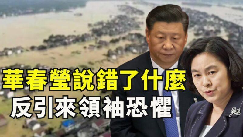 """【江峰时刻】华春莹说错了什么?反引来""""领袖""""的恐惧"""