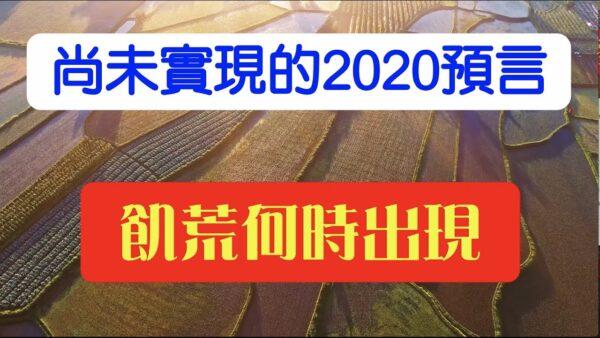 【脑洞vs黑洞】尚未实现的2020预言二 饥荒何时出现(17集)