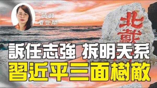 【薇羽看世間】訴任志強 拆明天系 習近平三面樹敵