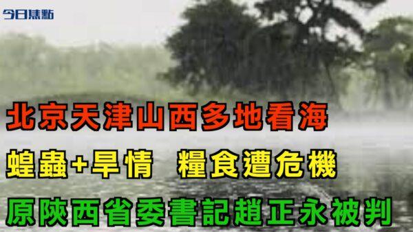 """【今日焦点】北京天津山西山东多地""""看海"""" 干旱加蝗虫 恐增粮食危机"""