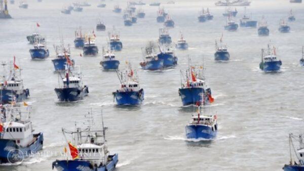 扶植武裝漁船 澳洲專家:中共毒箭頭危害公海安全