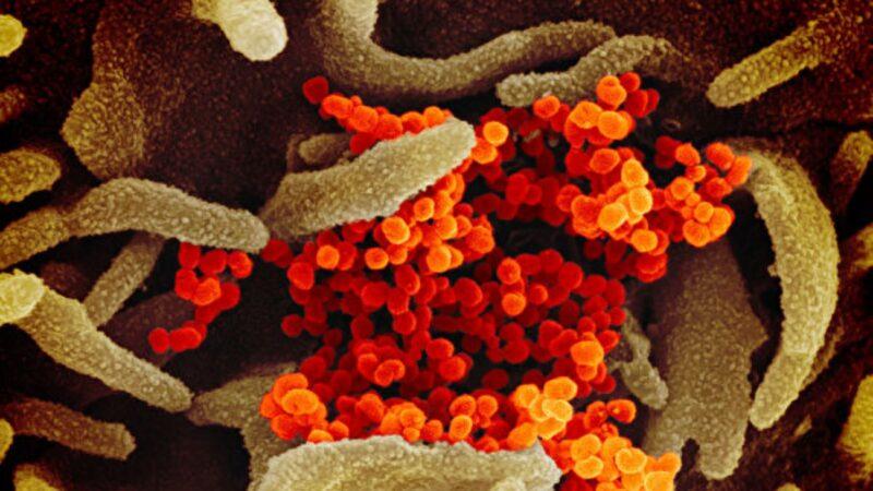 疫情在持續 中共病毒傳播方式仍難以捉摸