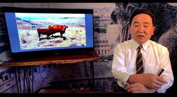 """《石涛聚焦》圣经旧约-标志""""圣经末日""""的红母牛出现"""