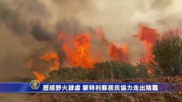 歷經野火肆虐 蒙特利縣居民協力走出陰霾