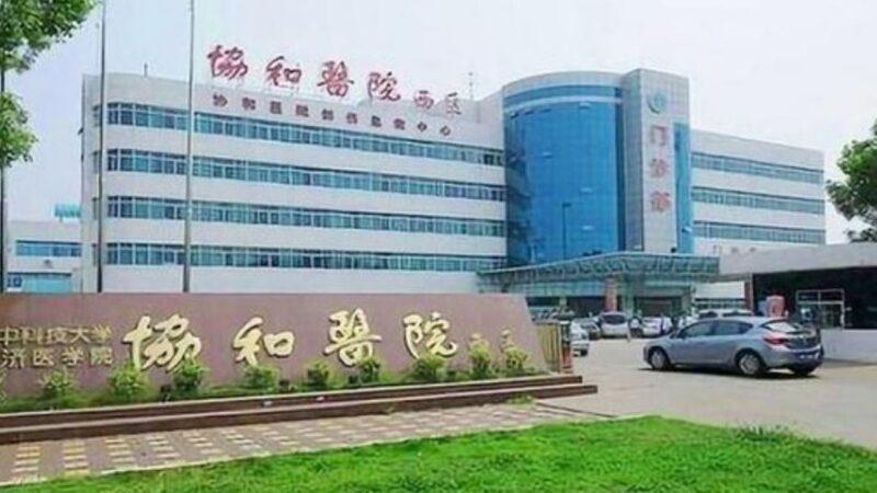 武汉抗疫护士发辞职信后突坠楼 网友疑被自杀