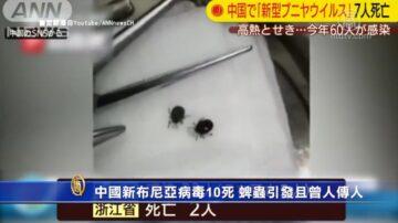 中國新布尼亞病毒10死 蜱蟲引發且曾人傳人