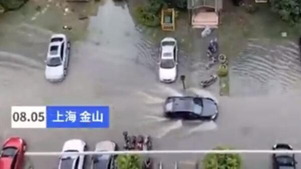 黑格比台风袭上海 街道变河流 积水深达1米(视频)