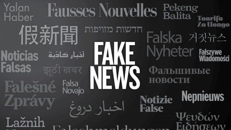 【名家專欄】制止假新聞策略:起訴媒體