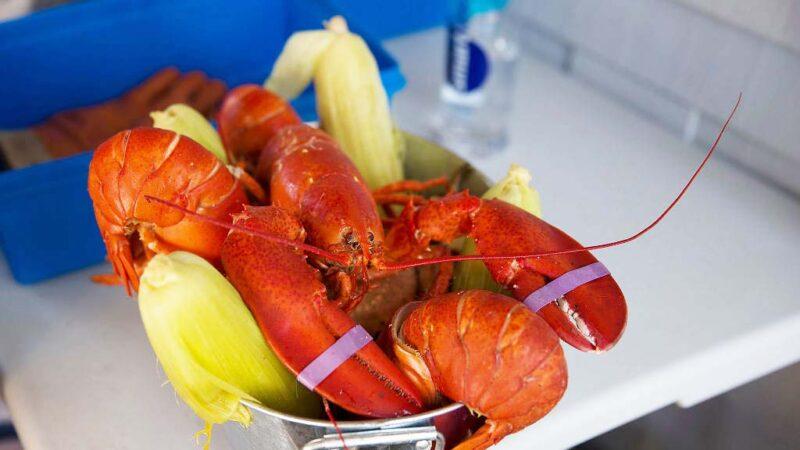 意外!美国龙虾输出欧洲免课征关税