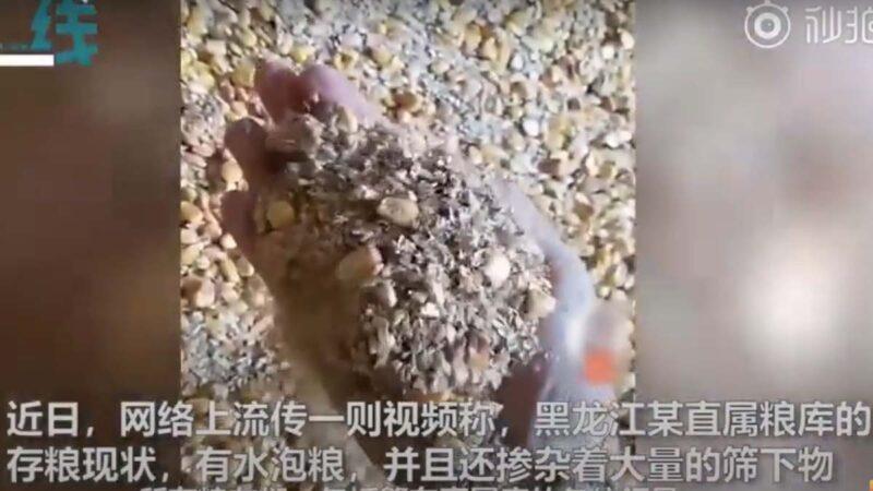 黨媒自曝四川國糧監守自盜 糧庫空倉一年無人過問