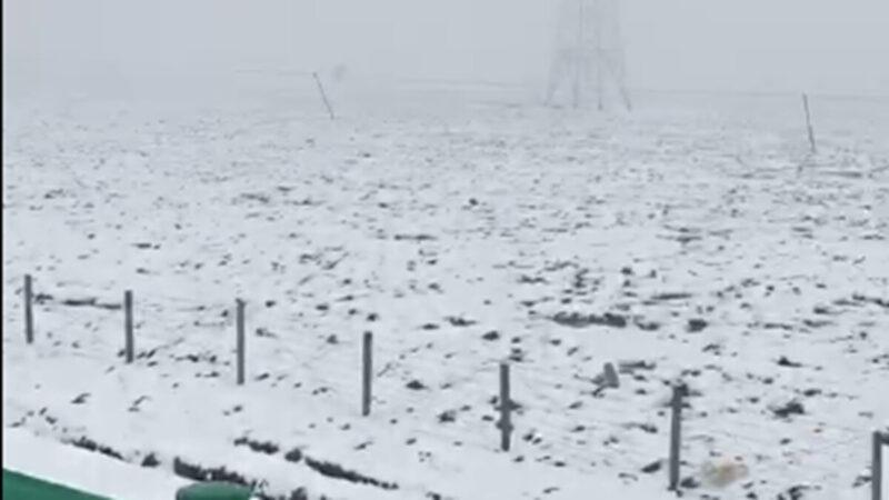 竇娥冤再現?北京、上海、青海齊飄「六月雪」