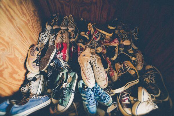 有戀鞋癖?德國狐狸狂偷100多隻鞋