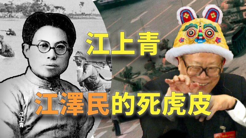 【欺世大觀】江上青是江澤民的死虎皮