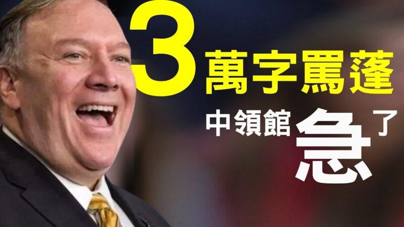 【老北京茶館】英預言家2020下半年大預言