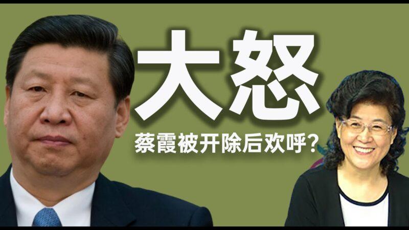 【老北京茶馆】蔡霞欢呼被开除党籍 习近平内循环遭遇重挫