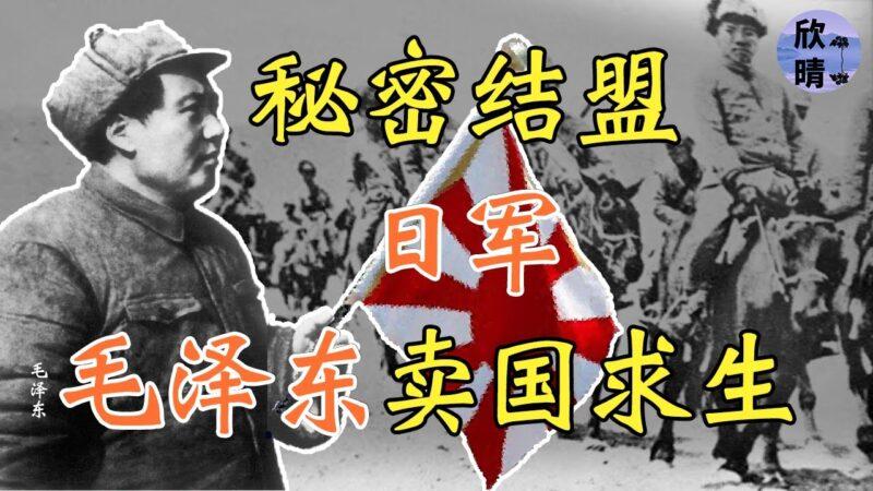 【欺世大觀】毛澤東祕密結盟日軍,賣國求生