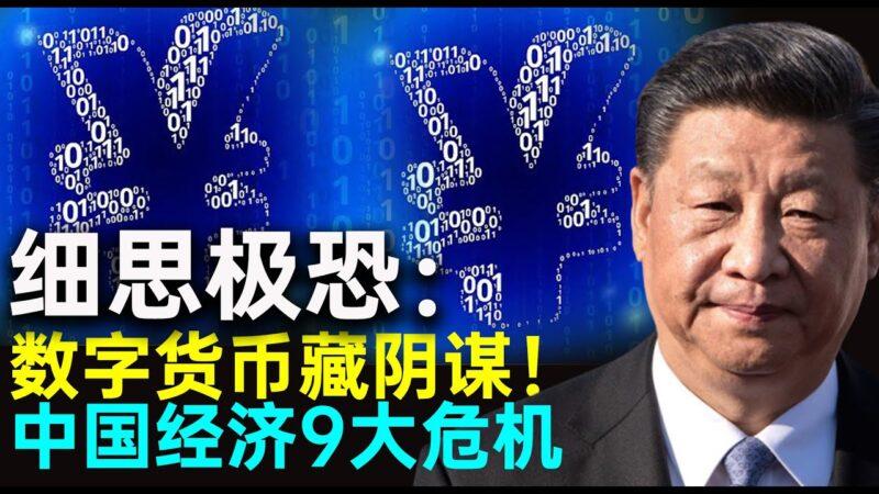 【秦鹏观察】中国经济9大危机加重 聊聊中国数字货币的实质