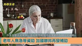 【加國生活】老年人生活成本漲?加國聯邦再發錢!