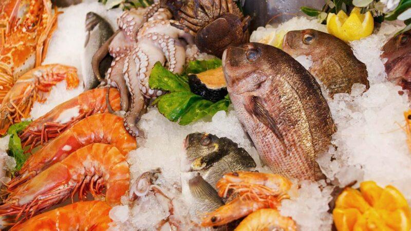 中國專家批當局甩鍋:甩給豬牛羊都行 唯獨魚清白