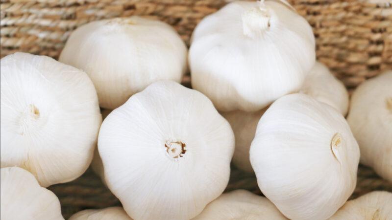 【美食天堂】4個保存大蒜的方法~幾週幾個月一年都新鮮!家常料理食譜 一學就會