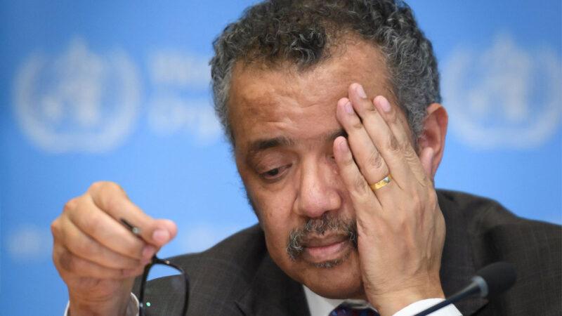 埃塞北方衝突 譚德塞遭控「扯後腿」為叛軍尋外援