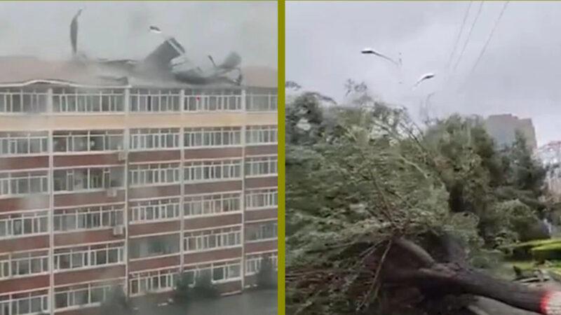 台风袭东北 吉林屋顶掀翻 哈尔滨交通停摆