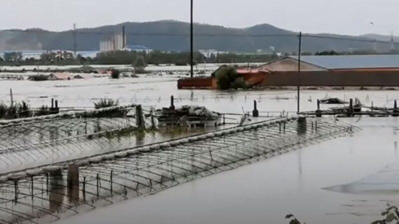 電站洩洪 黑龍江長江屯堤壩潰口80米(視頻)