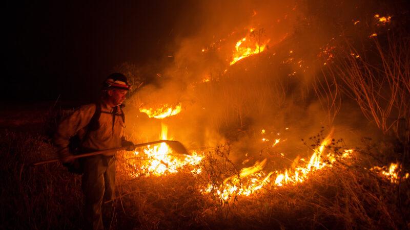 山火烧到千万富宅区 居民戴口罩方能入眠
