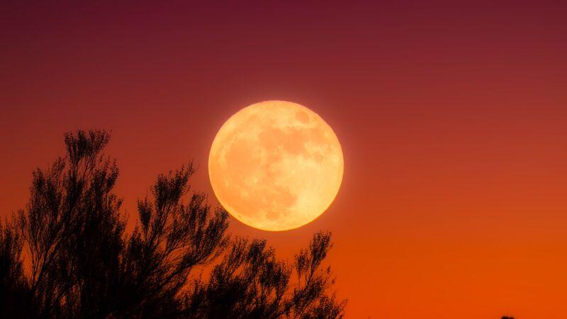 宇宙揭密:月球比太阳更亮