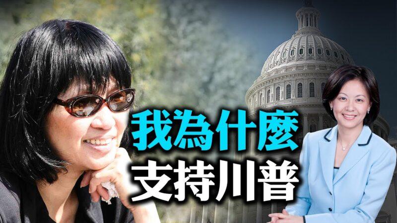 【大选特别节目】袁晓辉:不是支持川普 是等他这样一个人等了很久