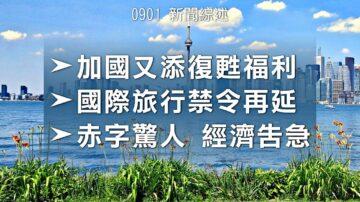 2020.09.01【新聞綜述】