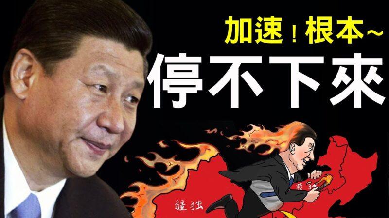 【老北京茶館】習近平加速徹底失控,根本停不下來!
