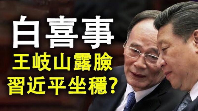【江峰时刻】王岐山露面的政治动向