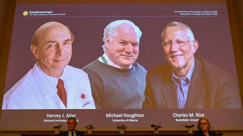 诺贝尔医学奖 3学者发现C型肝炎共享殊荣