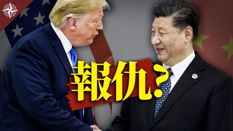 【十字路口】川普多招追击中共 北京趁疫偷袭台湾?