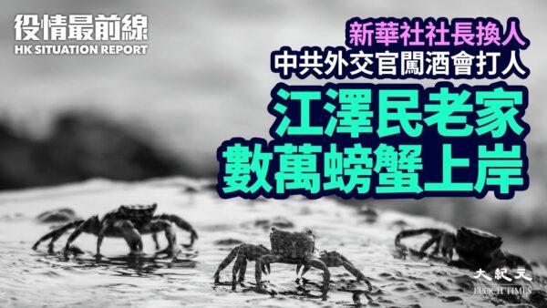 【役情最前线】江泽民老家数万螃蟹密集上岸