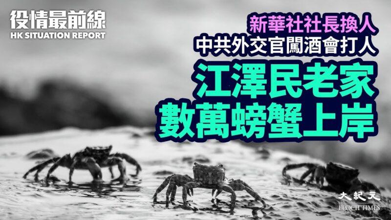 【役情最前線】江澤民老家數萬螃蟹密集上岸