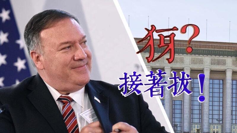 【横河观点】美国政府鼓励学中文 中共大外宣包括什么机构?