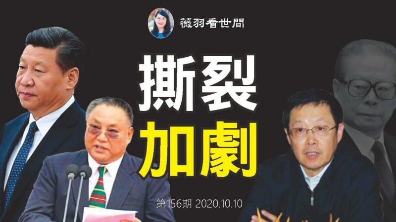 【薇羽看世间】习抓董宏 查中国残联 中共权贵大决裂?