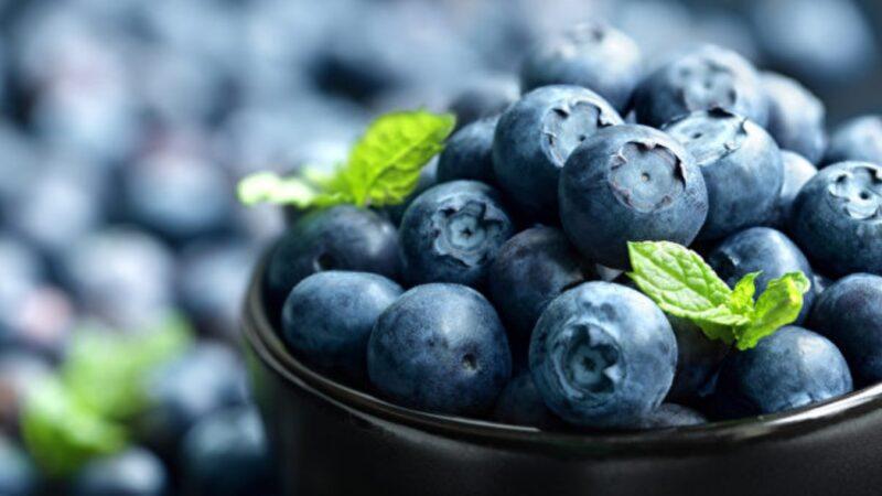 吃对健脑防失智!7种食物让大脑变年轻