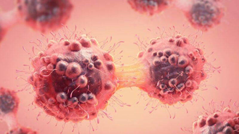 台研發全球首株抗體 可直接殺死癌細胞