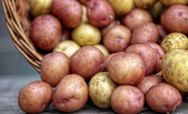 马铃薯深色比浅色好!这9种食物你吃对了吗