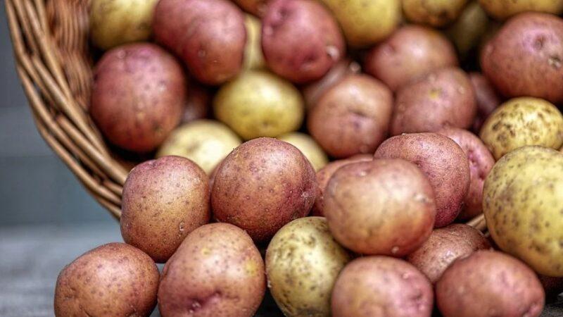 馬鈴薯深色比淺色好!這9種食物你吃對了嗎