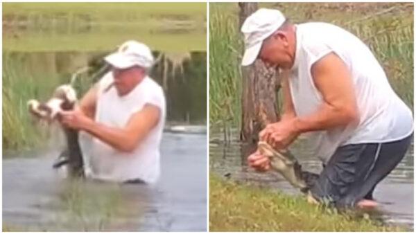 美國7旬老翁徒手掰開鱷魚嘴巴 救愛犬一命
