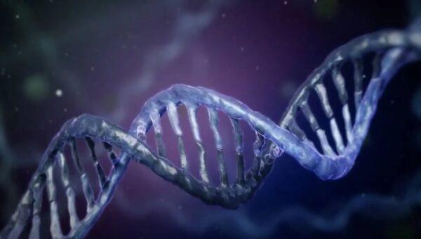全球僅一例!因全身DNA斷裂在極度痛苦中死亡